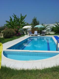 Large and private swimming pool (11 mts in length)