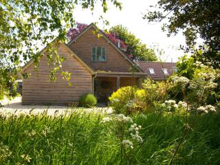 Idyllic cottage for 2 or 3 near Bridport ,West Bay and Lyme Regis ,West Dorset.
