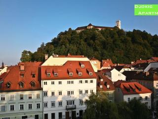 Ljubljana CityCentre App 5*