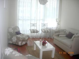 Sala de estar con aire acondicionado, Salida a balcón 2