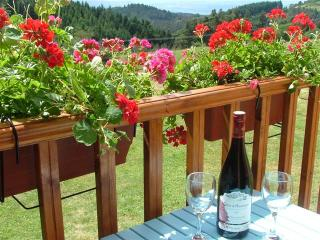 Romantic Cottage Livradois Forest. 10K Brioude, Champagnac-le-Vieux