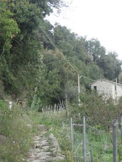 on foot, to Casa San Bernardo