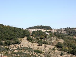 Poderino degli Ulivi - Scansano (Tuscan Maremma)