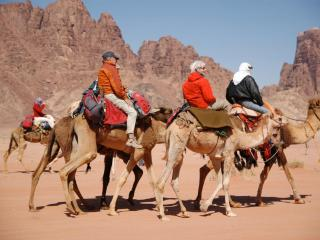 trekking and camel-riding are easy options from the camp