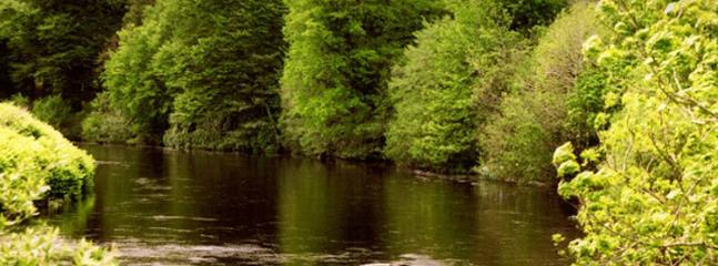 The River Finn,