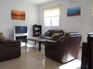 Lounge with large screen, satellite, PS3