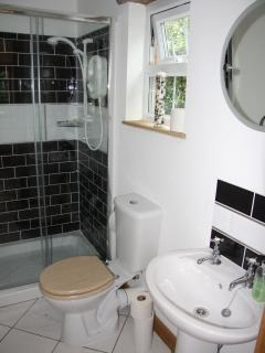 Modern Bathroom With Large Shower.