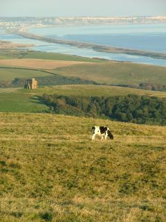 The Arresting  Beauty Of The Jurassic Coast.  Taken From Above The Village Of Abbotsbury.