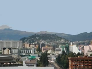 ITSA HOME - Torre Seis apt C10