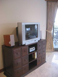 TV, sound system and DVD player (also plays MP3s, movies from USB stick)