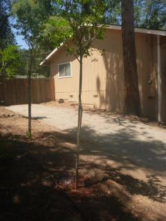 Side front yard, two driveways.
