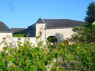 Gîte de charme en Val de Loire, Ligré
