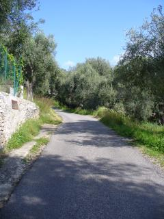 THE EXTRAURBAN ROAD BETWEEN PISCIOTTA AND VILLA CECILIA