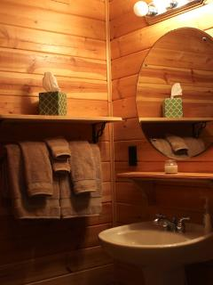 Pine Cone Room Bathroom, stand-up shower