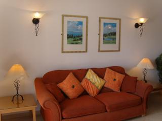 Comfortable sitting room with log burning stove & air con