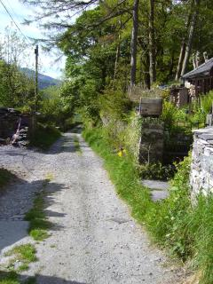 Lane at the front of the house leading to Padarn Country Park