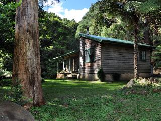 The Fernery at Red Dog Retreat, Kangaroo Valley