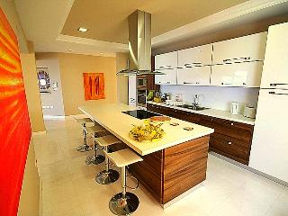 State of the Art modern Kitchen with Breakfast Bar Island