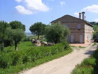 I due ulivi, Monterubbiano