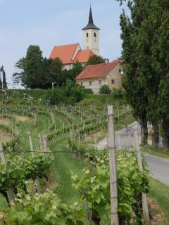 Village of Jeruzalem - wine tasting, lunches, walks