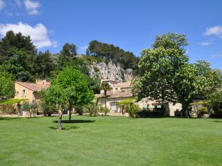 La Tuilerie - large 4 bdrm house on private estate in the heart of Provence
