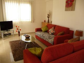Lounge with Double sofa bed & 2 seater sofa