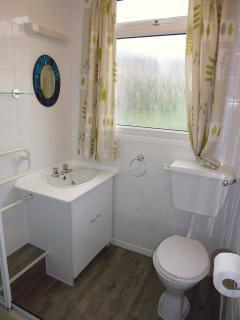 Bathroom 1 - shower cubicle