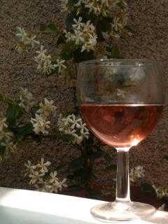 Rose and jasmine on the terrace, a perfect south of France pairing