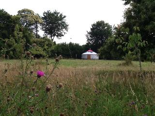 Forgetmenot Yurt, Mortain