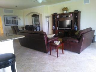 The living room has a '46 flat screen TV and home theater system