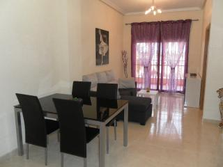 Nice 2 bedroom holiday apartment in Jacarilla