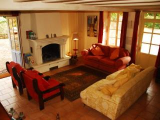 Living room - sink into a sofa with a glass of wine. Great open fireplace for colder months