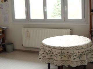 grand F2  meuble 15min CV Nancy jardin