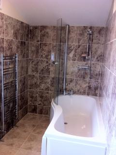 Bath, shower and heated towel rail