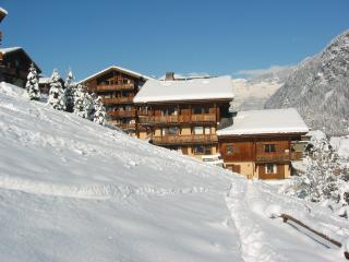 Residence Le Grand Balcon, Les Houches