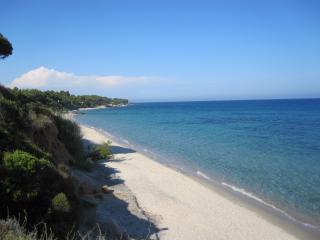 Villa Aloe, pool and relax, near Sardinia beaches
