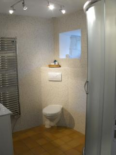 Shower Room with vanity unit and wc