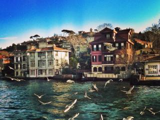 Romantic&Cute flat on Bosphorus