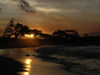 Romantic Beachfront Getaway