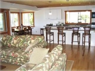 Open kitchen and family room.