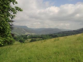view of the Dyfi valley