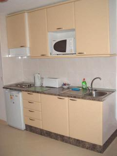Kitchen - two ring hob, fridge and microwave
