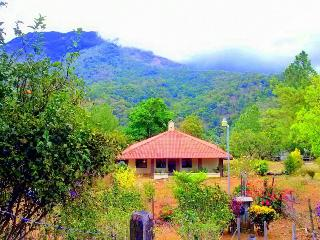 Beautiful and Peaceful Cabin, Chiriqui Grande