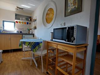 microwave and toaster, kitchen table (there are 4 chairs if needed)