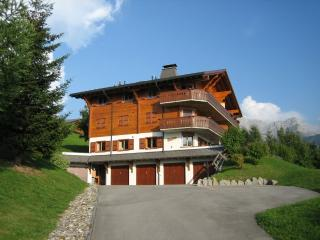 Gorgeous, pet-friendly, piste-side apartment, Villars-sur-Ollon