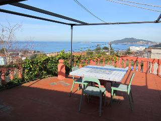 VIEWS OF THE BAY, THE ISLANDS FROM THE TERRACE