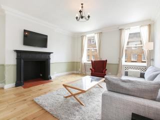 49. 1BR - Marble Arch - Oxford Street - Hyde Park, London
