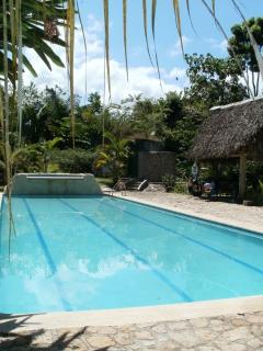 The stunning 18m swimming pool with barbeque rancho