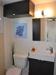 brand new bathroom with great storage and closet