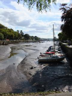 Tides out in Kingsbridge - 5 miles from Hope Thatch - a thriving town all year round
